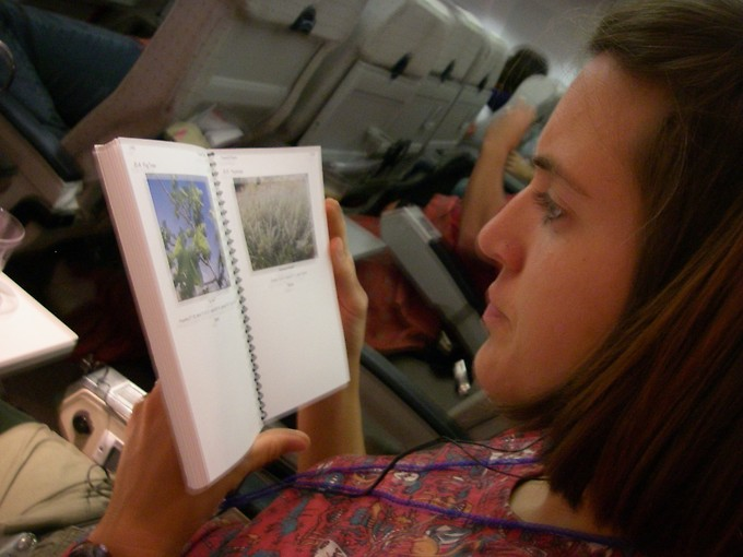 On the plane to Jordan, studying the guidebook.