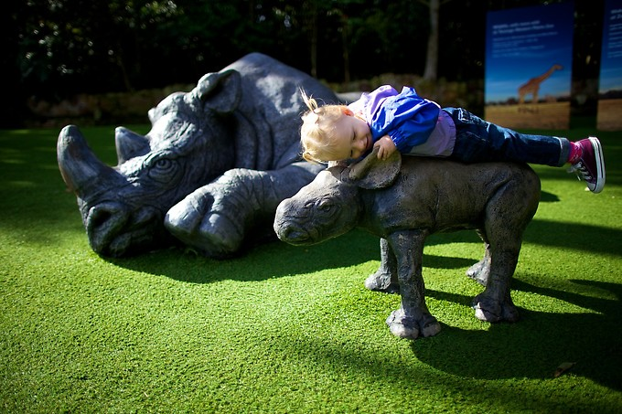 Naomi loves this statue of a baby rhino with its mommy.
