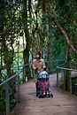 Walking through the temperate rain forest in the Blue Mountains while Naomi naps in her stroller.